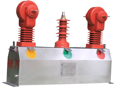 JLSZW1-10Ⅱ 不锈钢组合互感器