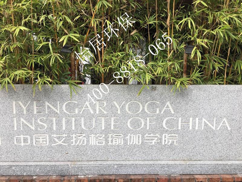 中国艾扬格瑜伽学院