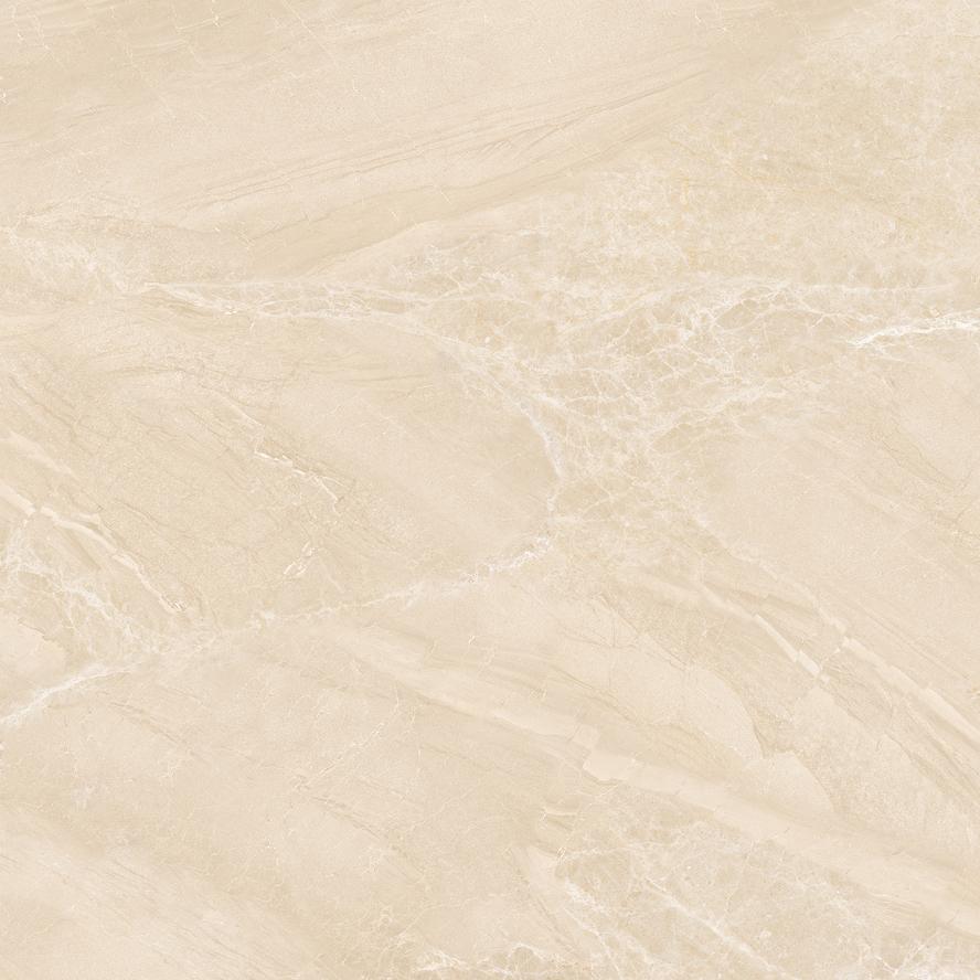 RYTA96002意大利云岩黄