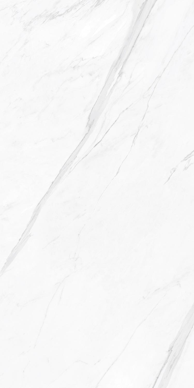 RYFB16610意大利爵士白