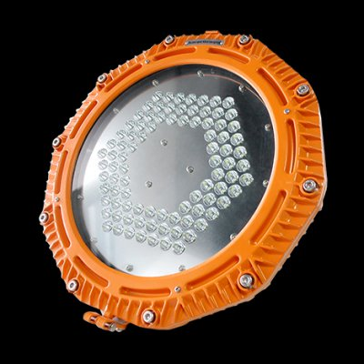 Frog Series - Explosion Proof LED Floodlight
