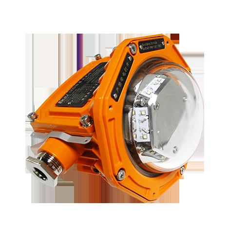 Tree Frog Series - Explosion Proof LED Flood Light