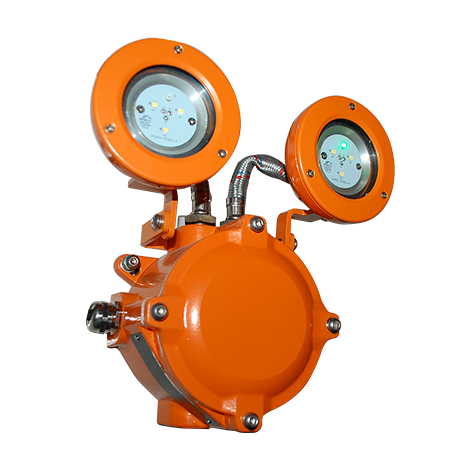 Mickey Mouse Series - LED Explosion Proof Emergency EXIT Light