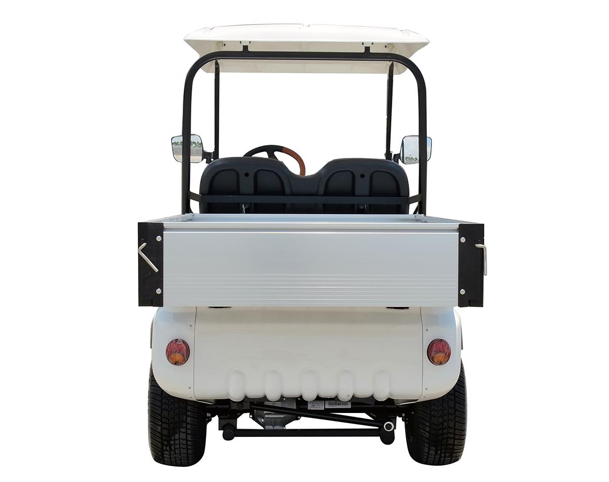 A617 Electric Cargo Car