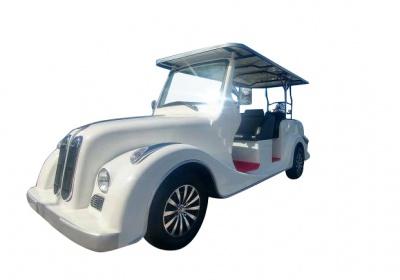 6 Electric Classic Car