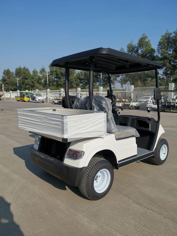 2 Seater Electric Cargo Car (LT-A827.2 cargo)