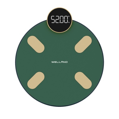 Innovative Smart  Body Fat Scale FG1916B