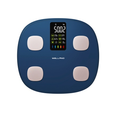 Smart Connection  Body Fat Scale Monitor FG1919