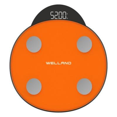 Innovative Smart Body Fat Scale FG2011B