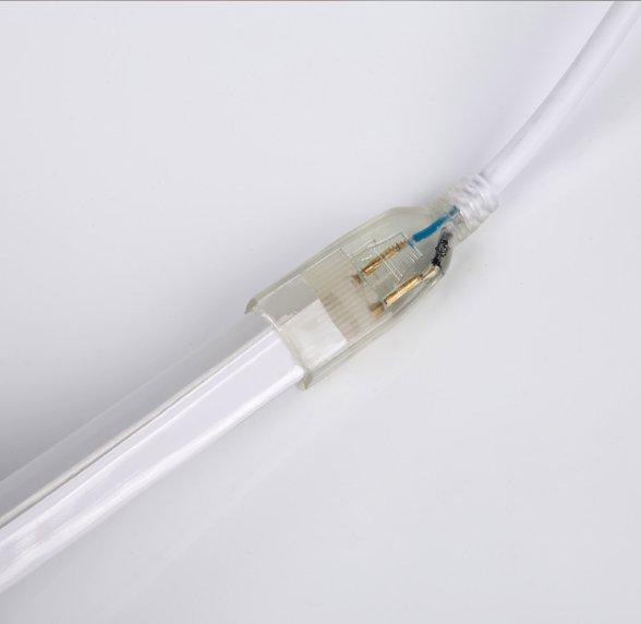 LED Neon Lights 8x16mm , 65ft Blue, 120V Neon Rope Lights, 2835 120LEDs/M, for Indoor Outdoor