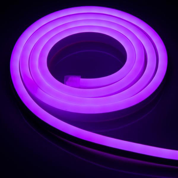 8x16mm LED Neon Lights,165Ft Purple 120V Flexible Rope Lights, 2835 120LEDs/M, for Indoor Outdoor