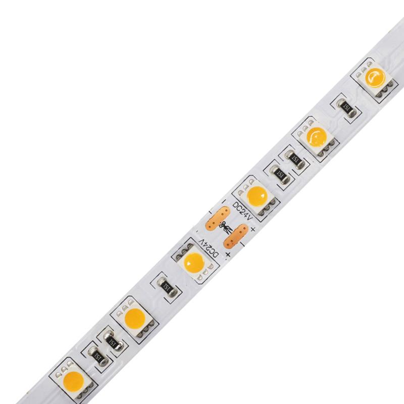 High CRI 10mm 60Leds/M 5050 Led Strip Light