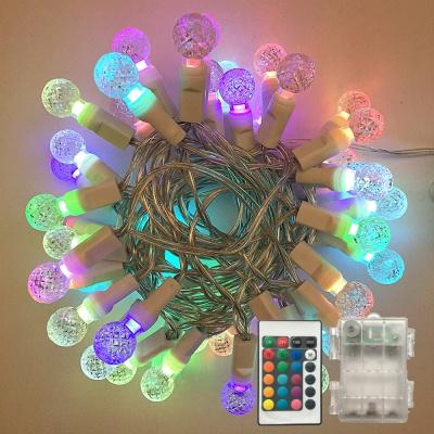 3V /120V G12 LED String Lights