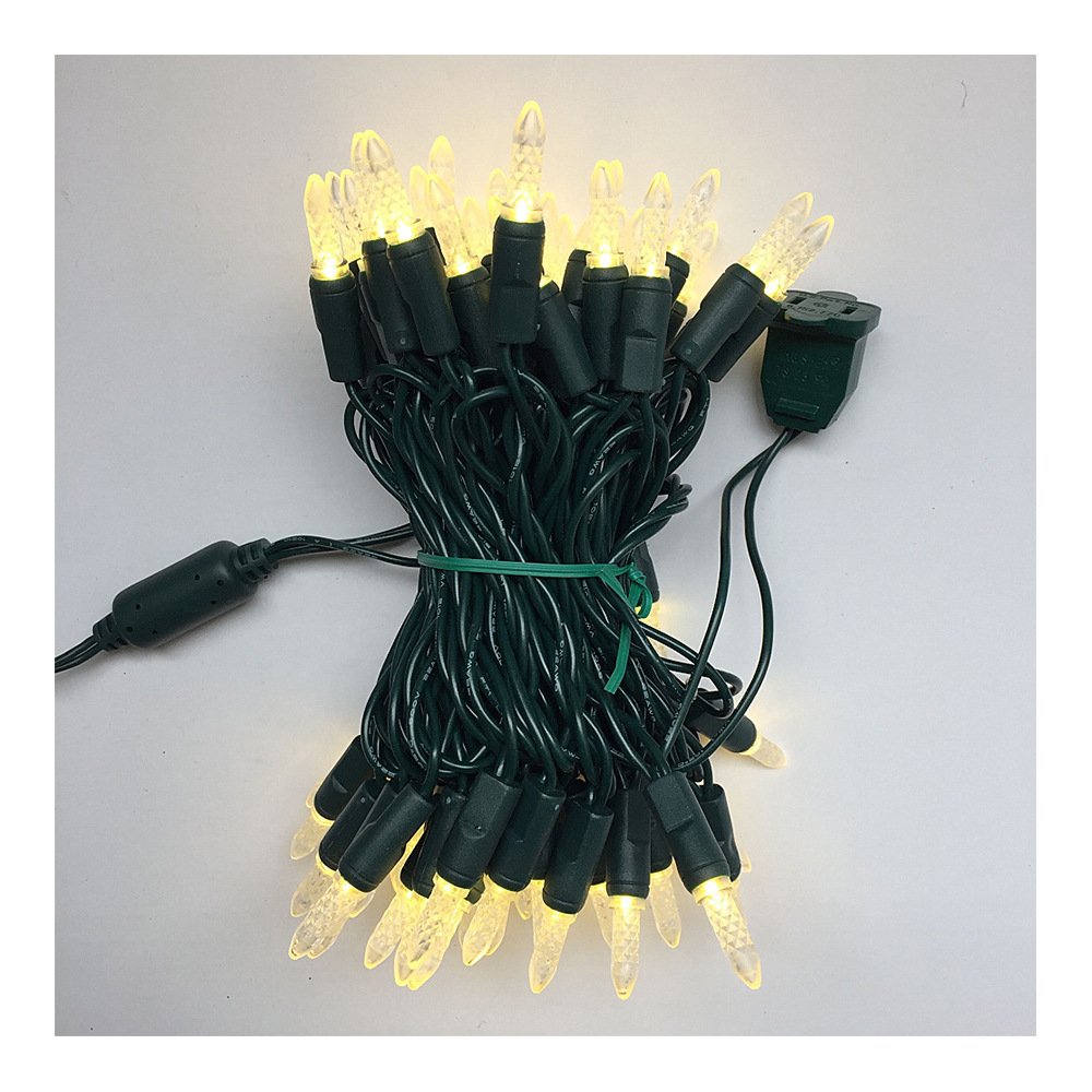 3V/120V M5 LED String Lights