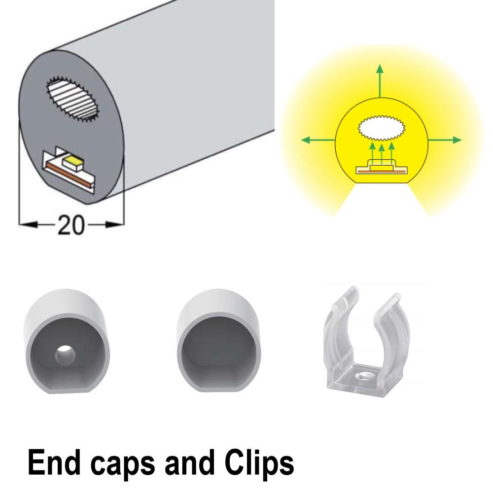 TopViewφ13(mm)270° LED Neon Light