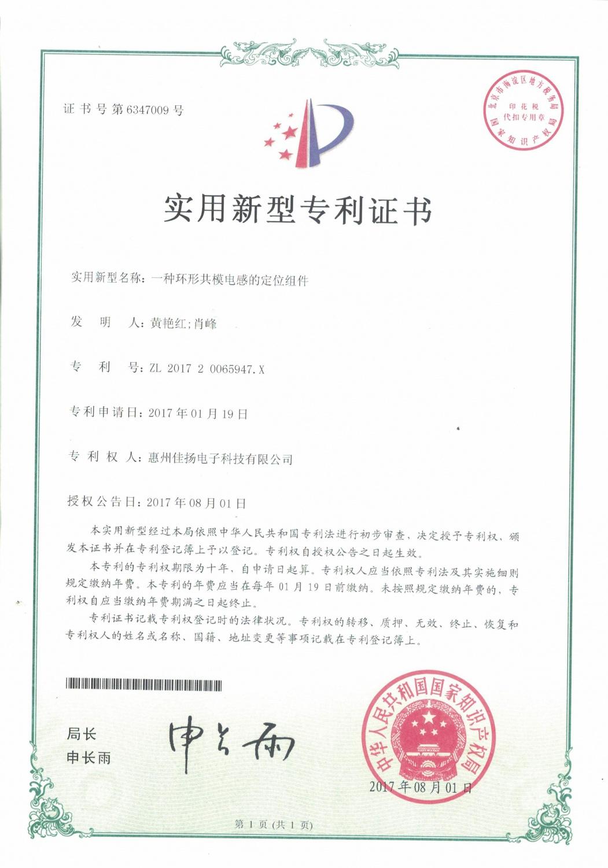 专利6347009