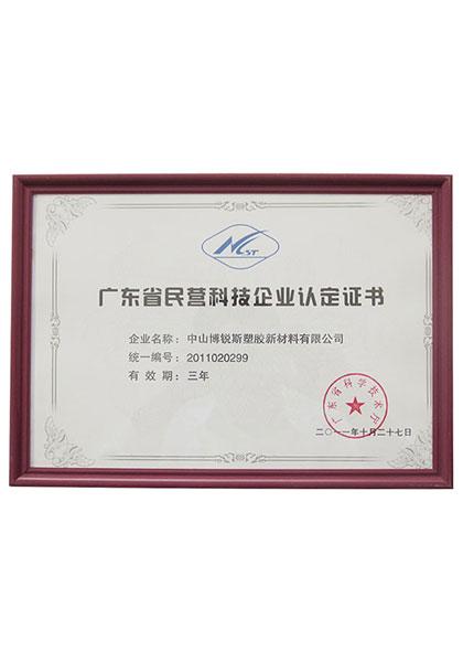广东省民营科技企业认定书