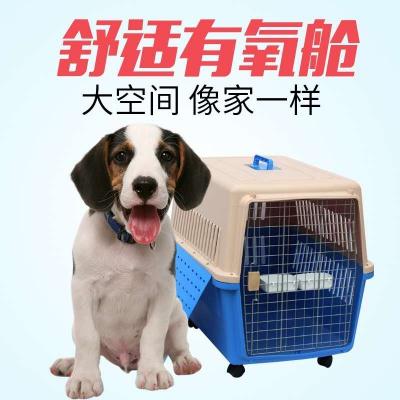 FM空运之宠物托运空运业务