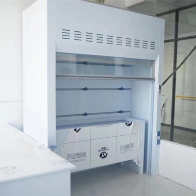 PP Walk-In Fume Hood, Floor Mounted Fume Hood