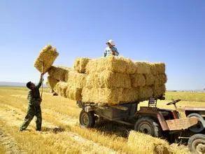 重磅!2021年国家62个重点惠农补贴项目(附详细名录)