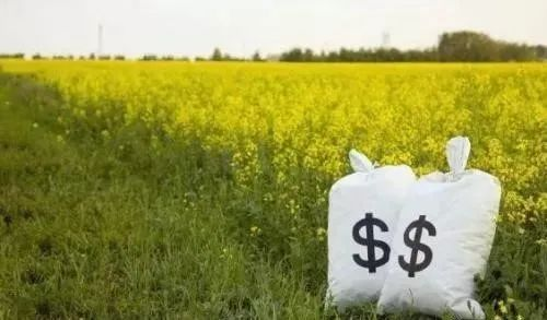 2021这6个农业补贴可以领