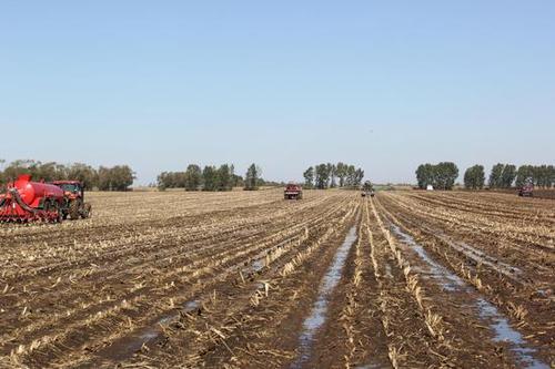 2021年农作物秸秆综合利用试点项目实施方案