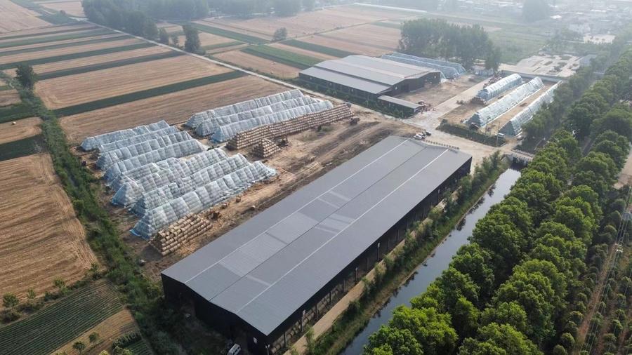 固镇县:推进秸秆离田 保护环境综合利用