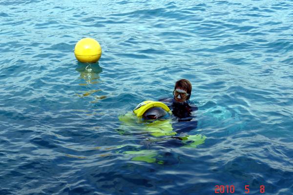 海南小飞象潜水摩托在游艇上使用