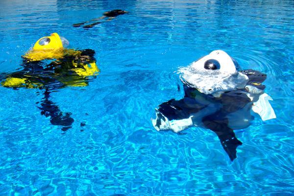 海南小飞象潜水摩托在游泳池里使用