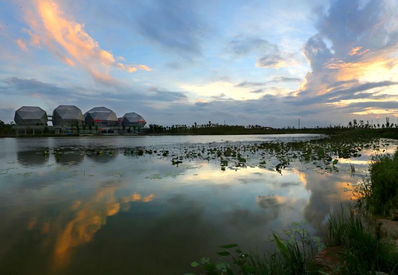 """东莞:迈向""""天蓝、水清、城美""""现代生态都..."""