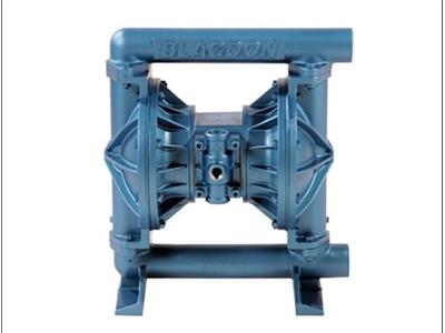 B25金属泵