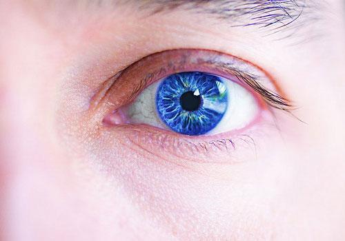 广州薏莉雅化妆品加工厂-----眼部保养