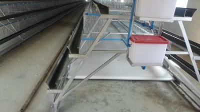 阶梯式输送带自动喂料系统1