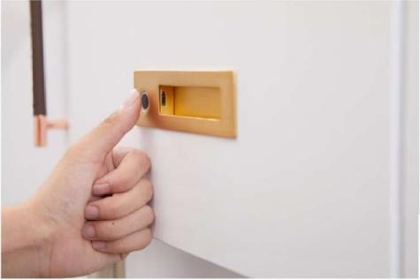 德国原装进口路福芬妮智能锁极简时代长方形指纹拉手一体半导体活体带LED灯指纹锁