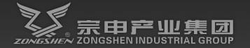 宗申集团(国际市场荣销)