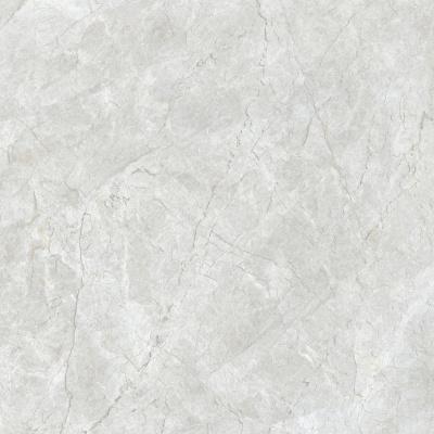 81C10 安格拉银灰