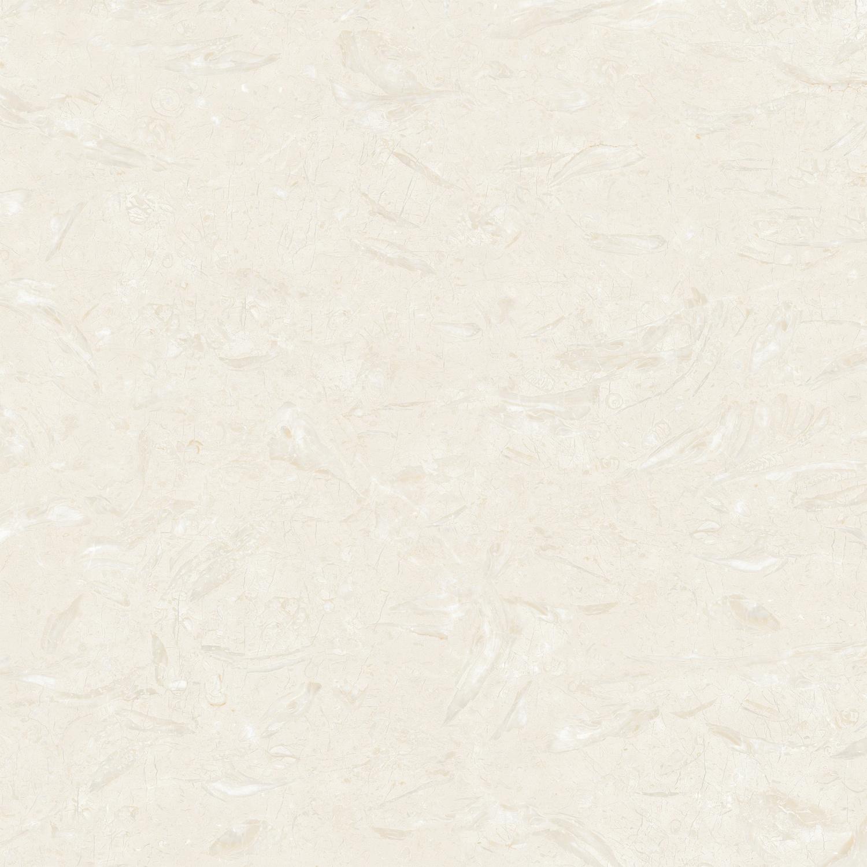 81A02 伊朗艾菲米黄
