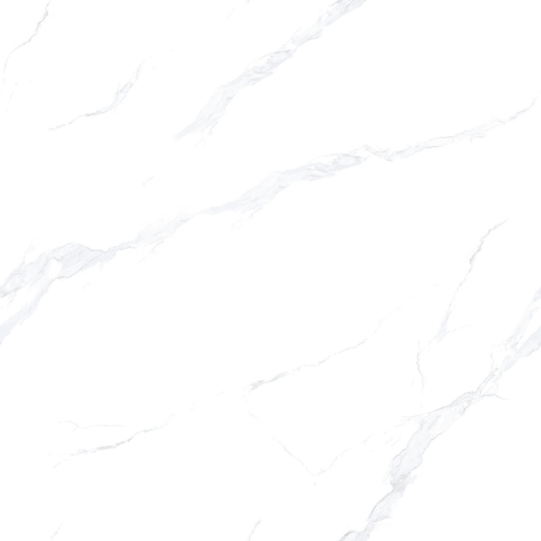 81E01L