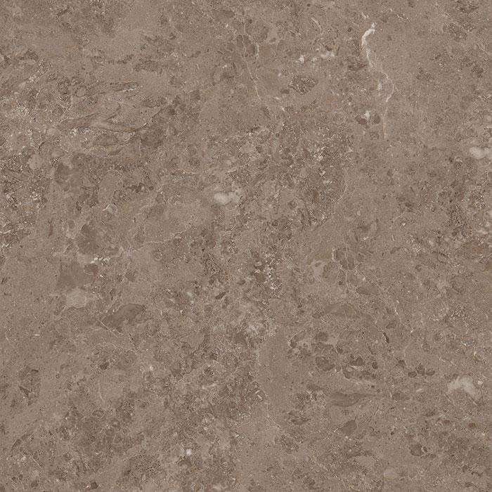 83A11 马德里灰岩