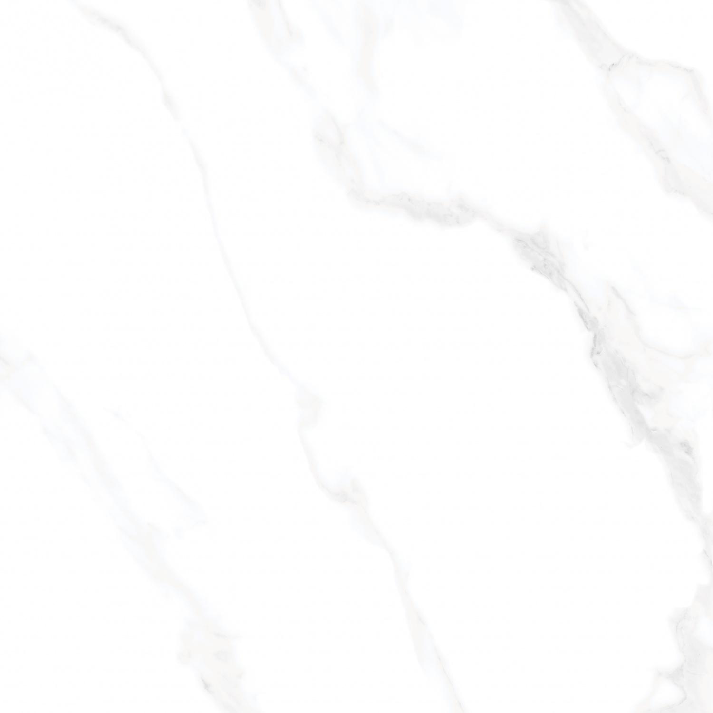 83C11 北极雪脉白