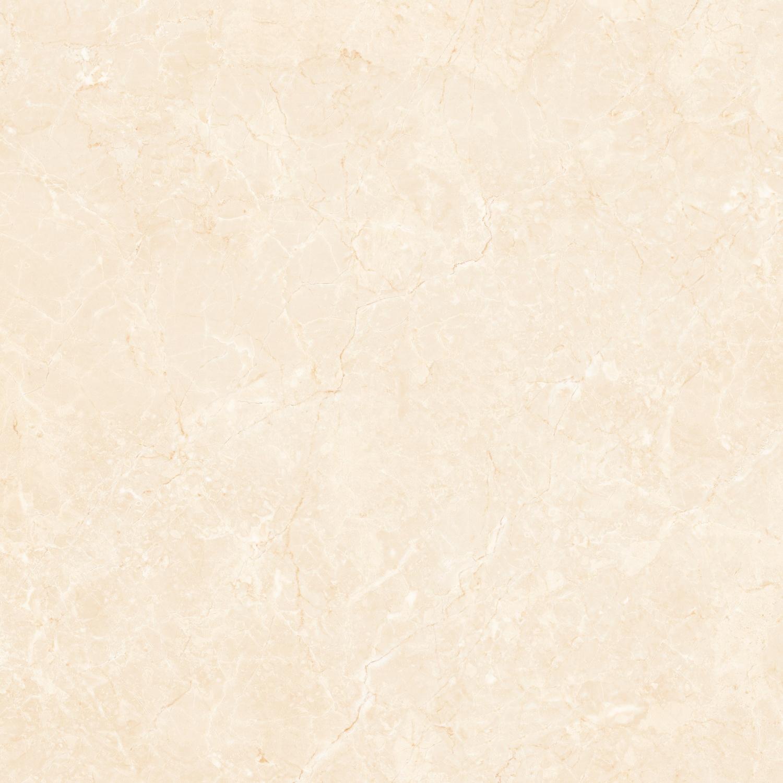 83B39 新西兰新雅米黄