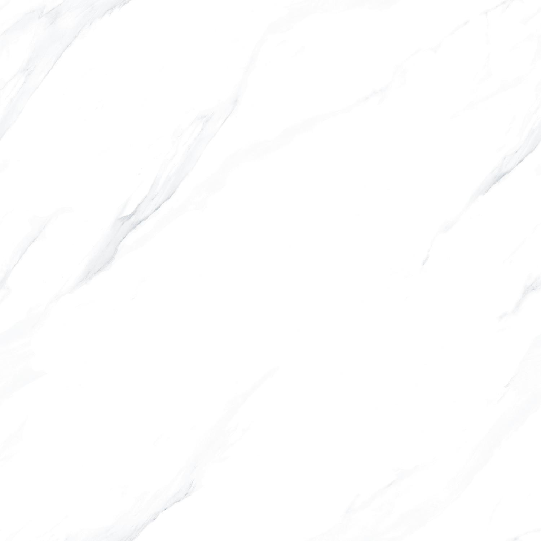 83B68L