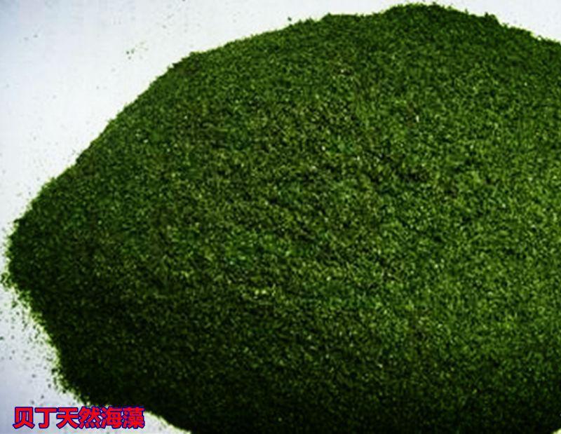 天然海藻粉
