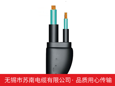 额定电压0.6/1kV聚氯乙烯绝缘、交联聚乙烯绝缘预制带分支电缆