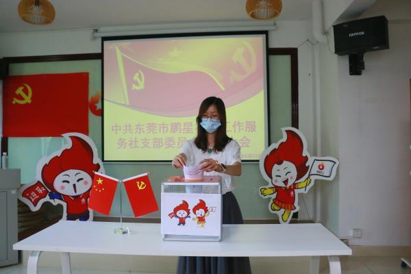 薪火传承,初心不改——中共鹏星党支部顺利完成支部换届选举工作