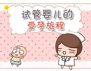 蓓贝天使:在国内正规机构做试管婴儿助孕要经历哪些过程
