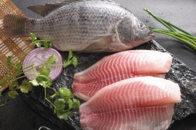 罗非鱼与鱼片