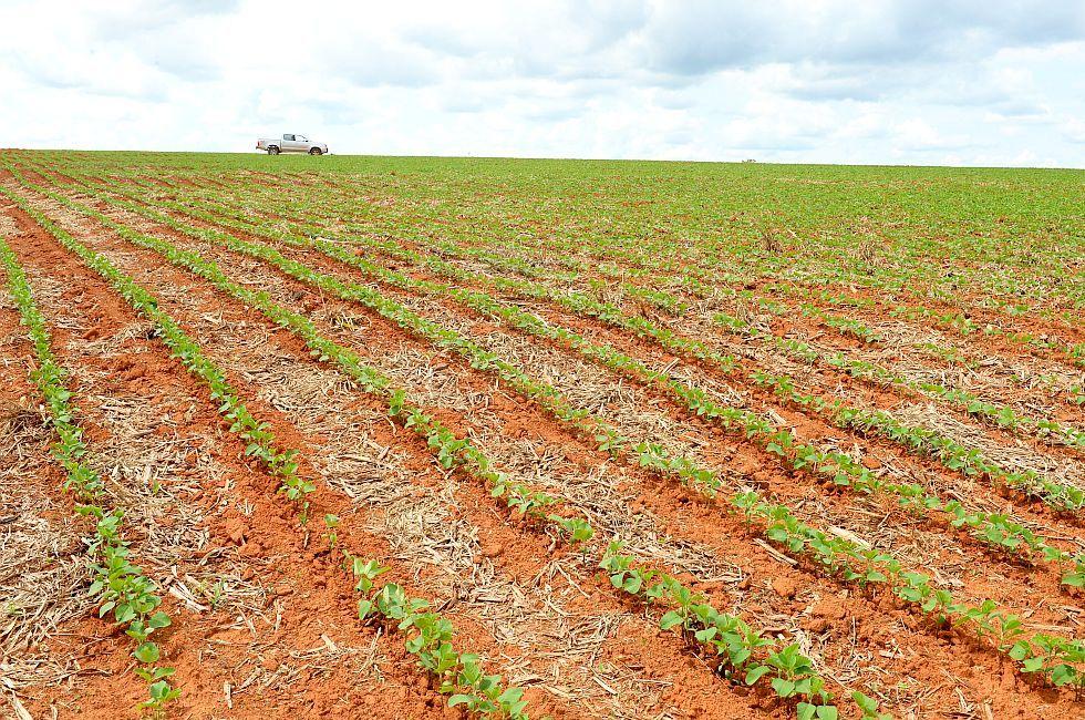 匈牙利农田价格上涨7.3%