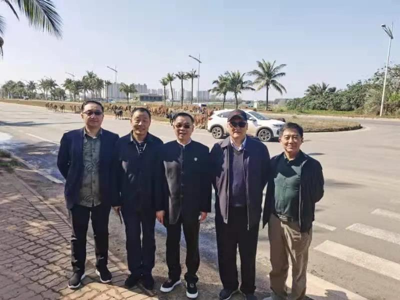沈峰主席新年第一天考察海南自贸港地产开发项目