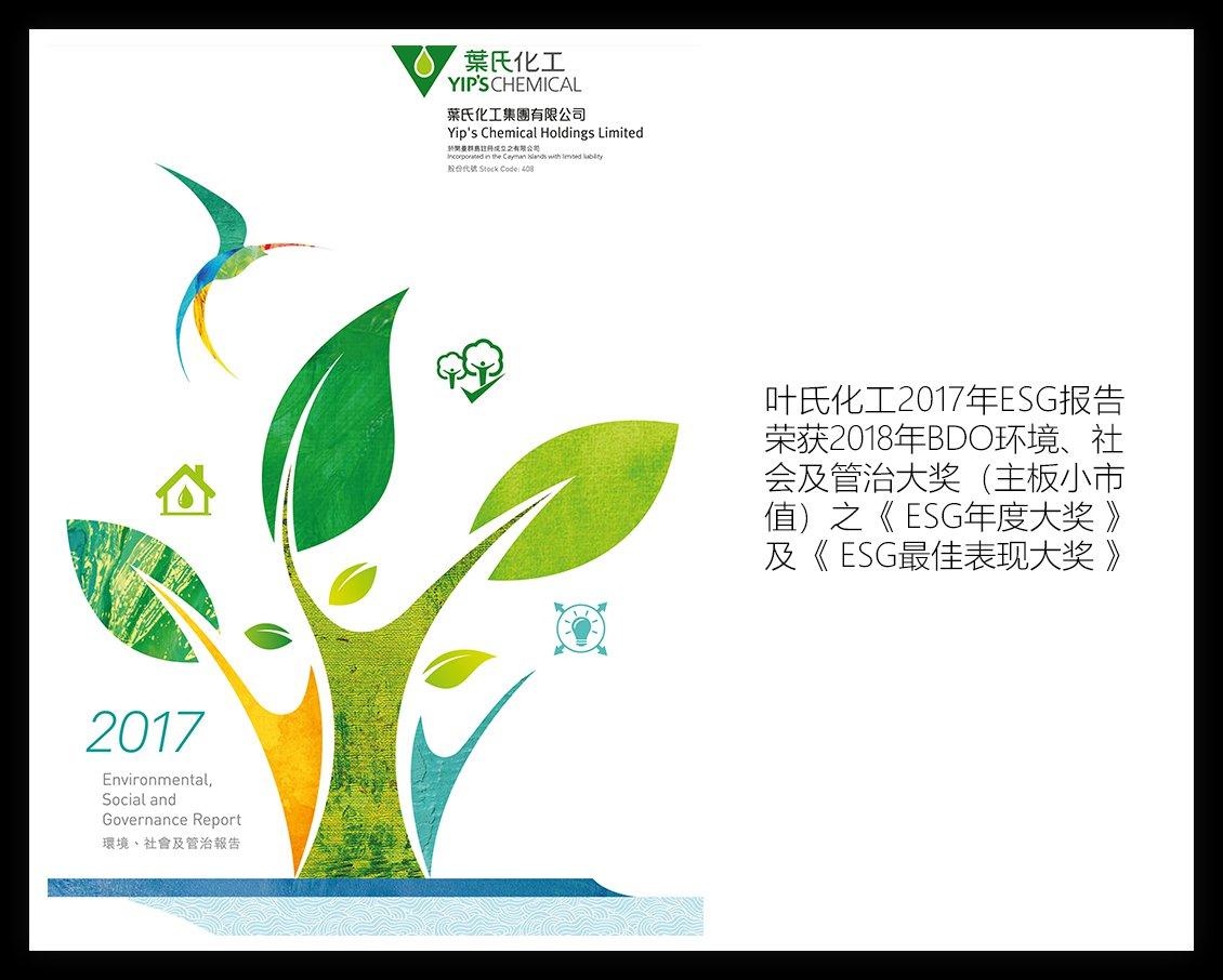 叶氏化工-2017年